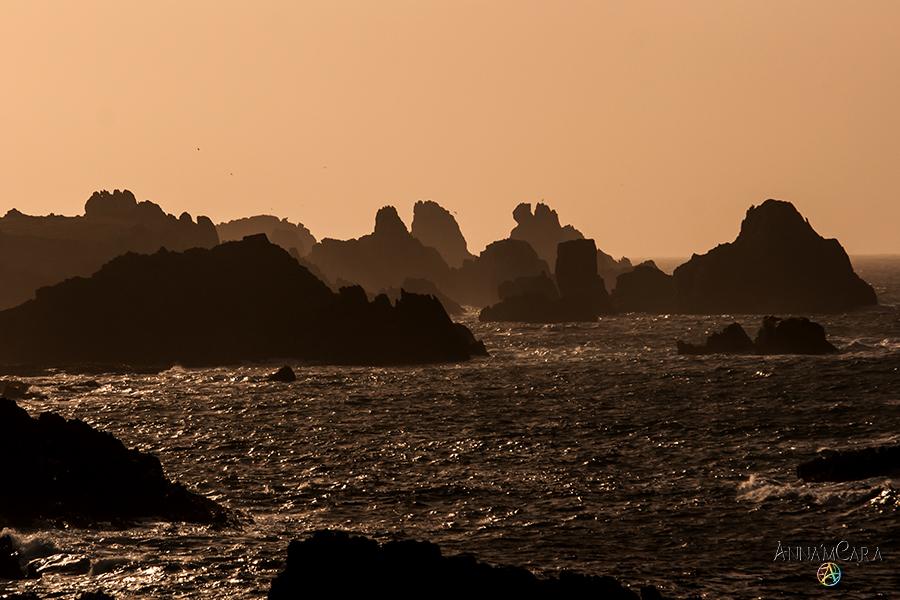 AnnamCara - Blog - Kuriose Tage - Tag des Meeres - Ouessant
