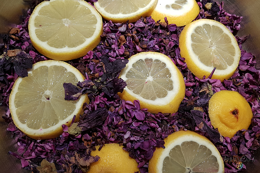 Anna'mCara-Blog - Rezepte - Fliedersirup - Zubereitung - Blüten & Zitronen vorbereiten