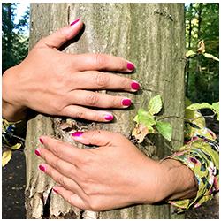 AnnamCara - Seminar - Kräuterwissen im Jahresrad - Erfahren & berühren